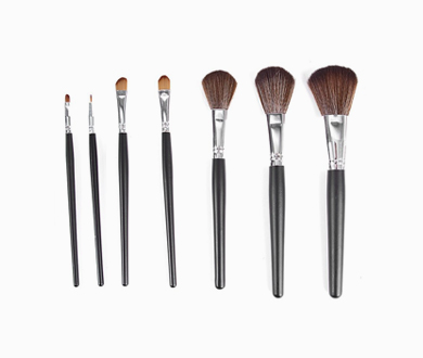 Set Makeup Brush