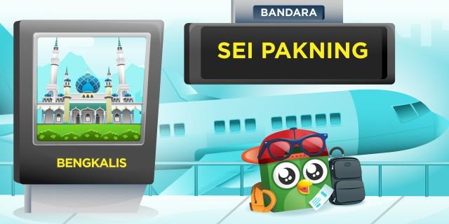 Bandara Sei Pakning