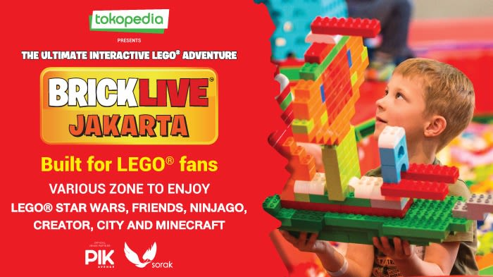 Brick Live Lego - Background