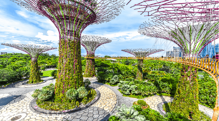Gardens by The Bay - Background