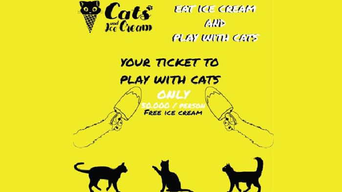 Cats And Ice Cream - Background