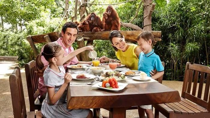 Singapore Zoo Breakfast - Background