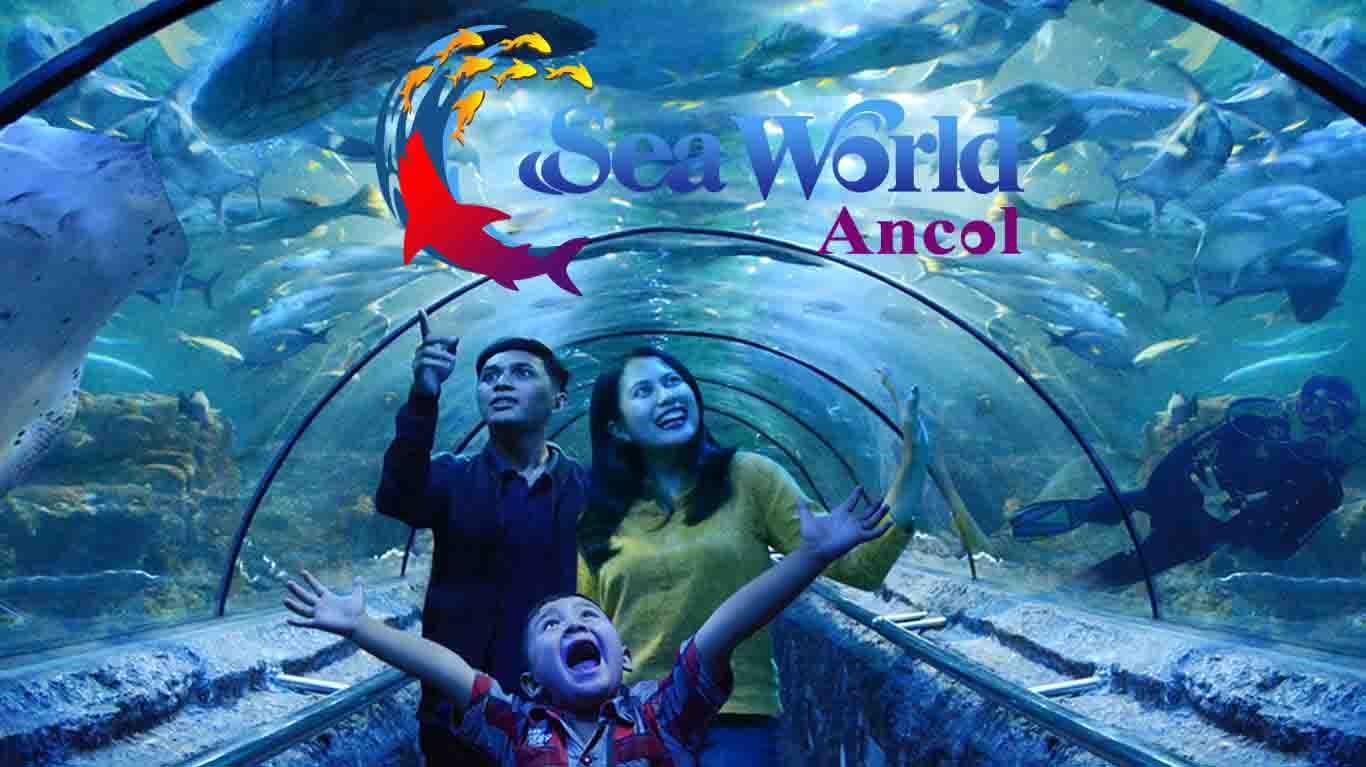 Seaworld - Background