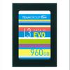 Team L3 EVO 960GB