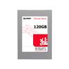 Gloway SSD Fervent Series 120GB