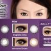 Softlens Disposable Freshkon Alluring Eyes-Magnetic Gray