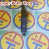 Charger Palm Treo
