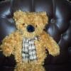 Boneka bear syal merk Maxine