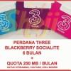 PERDANA THREE BLACKBERRY 6 BULAN
