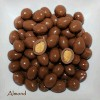 Coklat Delfi Almond 500gram