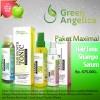Obat penumbuh rambut rontok / botak Green Angelica paket Lengkap