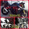 Cover Shock Ninja Z 250 & SL