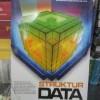 Struktur Data: Pondasi Membuat Program yang Elegan dan Efisien