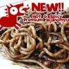 NEW.. Hot & Spicy Jajangmyun