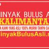 Minyak Bulus Asli Kalimantan 50 ml