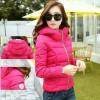 Limited Stock!!! Winter Warm Jacket Jaket Hangat Import