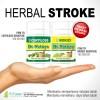Obat stroke herbal alami paling ampuh