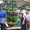 Pelatihan / Workshop / Pengenalan Hidroponik Langsung Di Kebun Asli