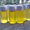 Minyak Bulus Papua Jumbo Double Power 20ml Jamin Beda, lebih strong