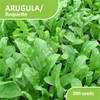 200 Seed - Benih Arugula / Roquette / Rocket
