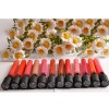 Long Lasting Matte Lip Gloss - Color No.10