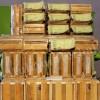 Kuding Plus Tea Green World 100% Asli Original (Bergaransi)