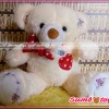 Boneka beruang bear cream pita lucu