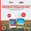 Pollenergy 90 tablet Bee Pollen import USA