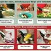 Clever Cutter Gunting + Talenan / Pemotong Sayur / As seen On Tv