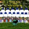 Pure Salmon Oil 518ml
