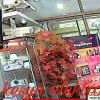 TERBARU PAKET 8 CHANNEL 8 CAMERA 3 MP HDD 1 TB SUPER HD 1080P