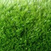 Rumput sintetis impor langsung - Full Hijau