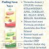 Nayz Puding Susu Kemasan Kotak 200 Gram Makanan Bayi