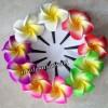 1set Jepit bunga spon kamboja bali - S thumbnail