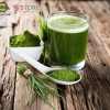 NATURELO - Raw Greens SuperFood Powder - 30 day supply