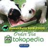Dog & Cat Raw Food - Fresh Lamb Meat