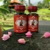Minyak Lintah Bali Utara Asli Bikin Besar Panjang Keras