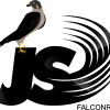 Jakarta Selatan Falconry