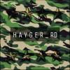 Hayger Military