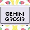 Gemini Grosir