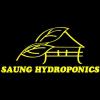 Saung Hydroponics