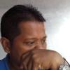 M Samsul Arif