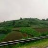 Eko Retnowati