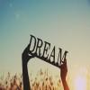 Flock Dream