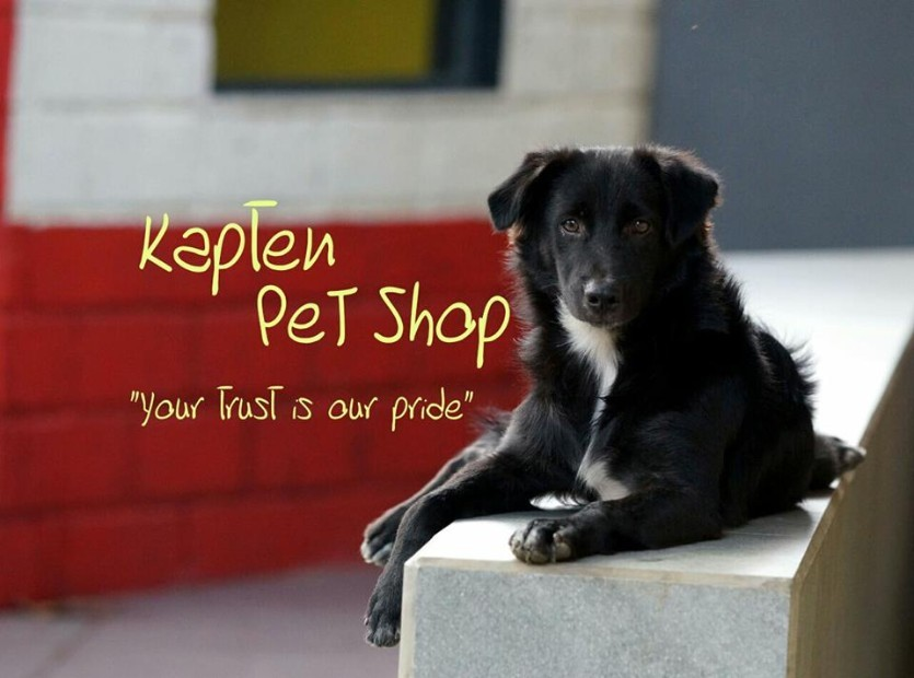 Kapten Pet Shop