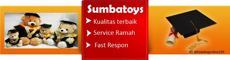 Sumbatoys and Aksesories