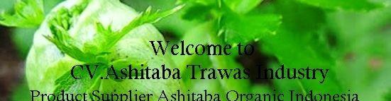 Ashitaba Trawas Industry