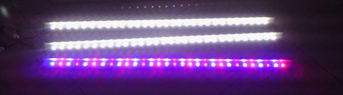 Kios LED