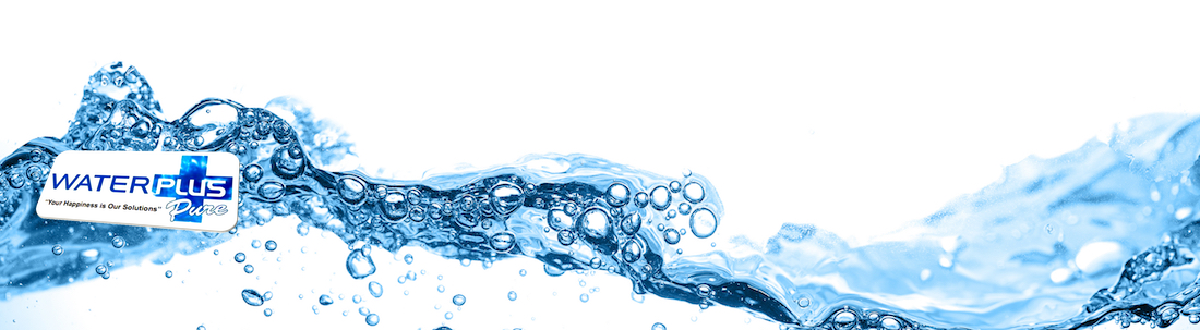 WaterplusPure