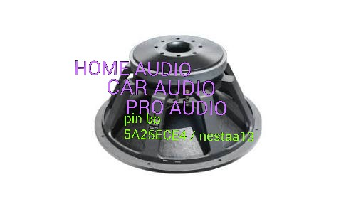 Nestaa Audio